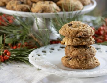 dried cranberry and chocolate cookies